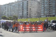 Marcha mundial por los derechos de los animales